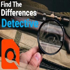 Find the Differences Detective