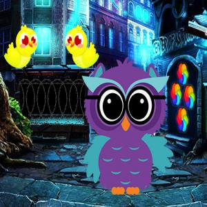 Ruler Owl Escape Game
